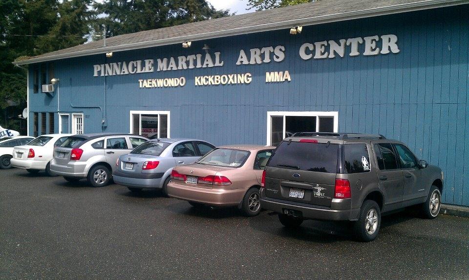 Pinnacle Martial Arts - ad image