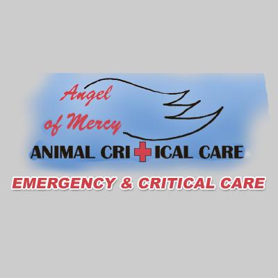 Animal Hospital in TX San Antonio 78251 Angel Of Mercy Animal Critical Care 8734 Grissom Rd.  (210)684-2105