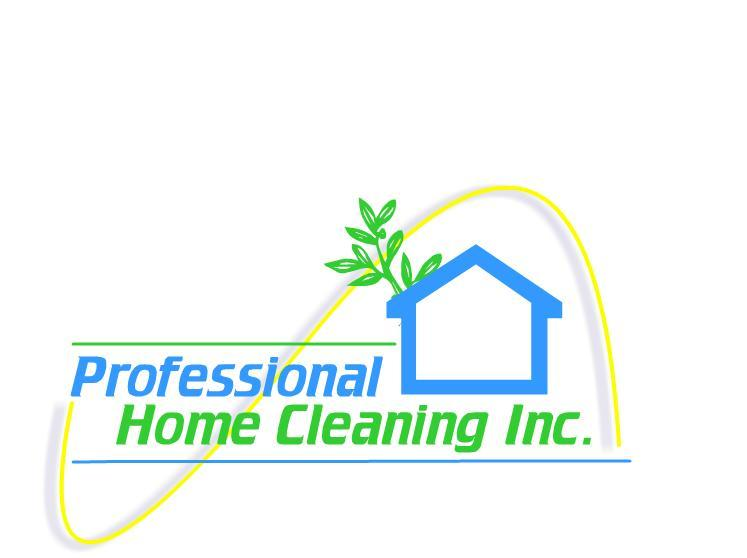 Professional Home Cleaning Inc - Edina, MN - House Cleaning Services