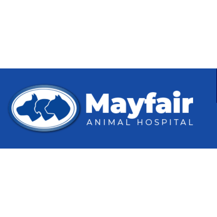 Mayfair Animal Hospital