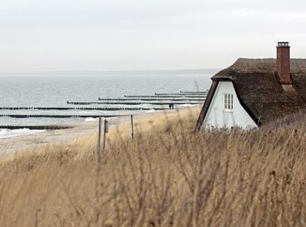 Nordsee Immobilien - Nordsee Immobilien in Ostfriesland Makler für Norden, Norddeich, Greetsiel, Küstenort und ostfriesisches Binnenland