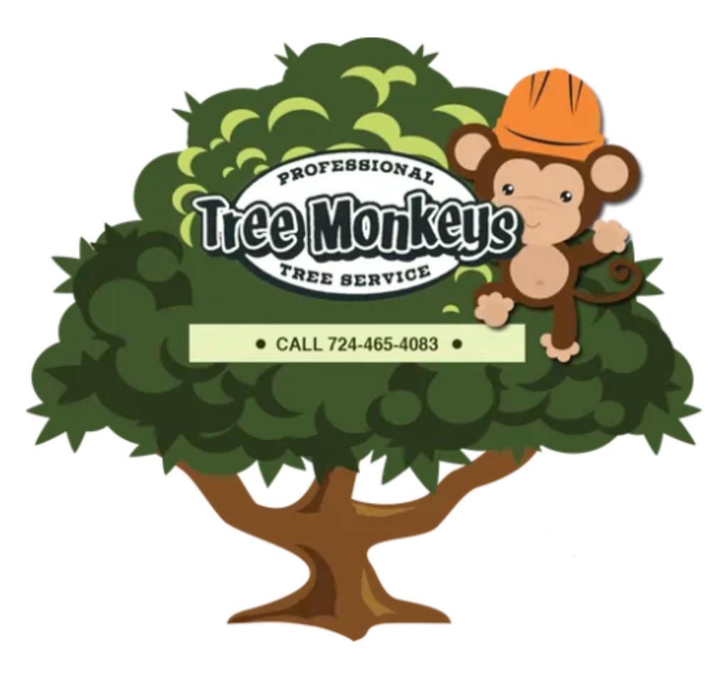 Tree Monkeys Co.