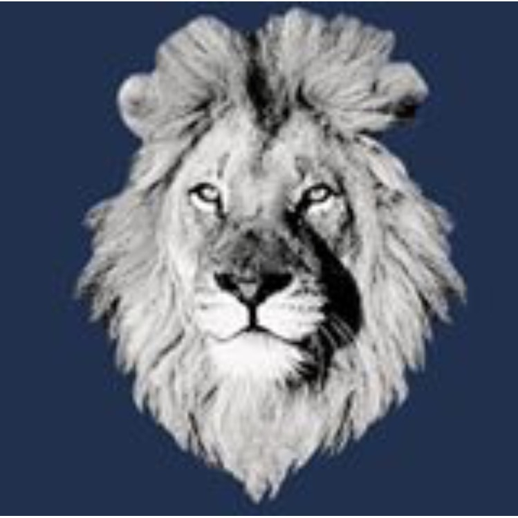 White Lion Moving & Storage - Deerfield Beach, FL - Movers