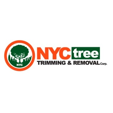 NYC Tree Trimming and Removal Corp.