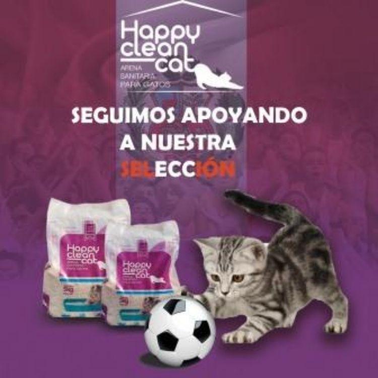 Arena Happy Clean Cat
