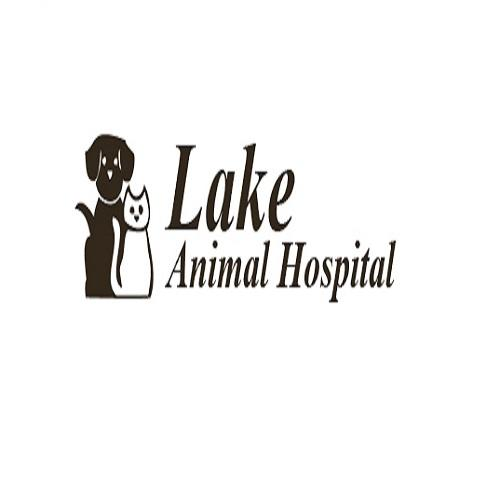 Lake Animal Hospital LLC - Storm Lake, IA - Veterinarians
