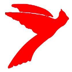 Cardinal Inc