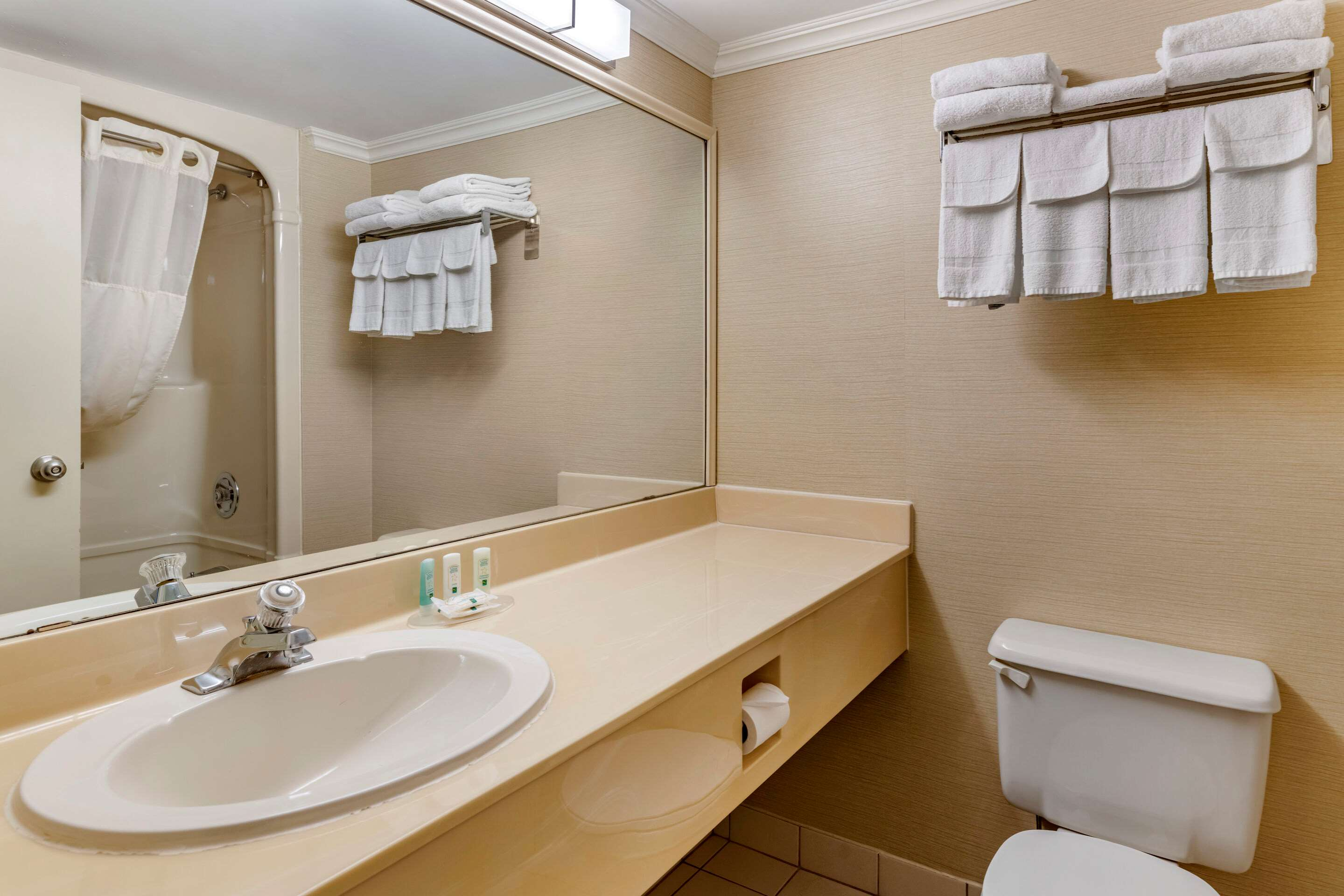 Quality Inn & Suites Garden Of The Gulf in Summerside: Bathroom in guest room
