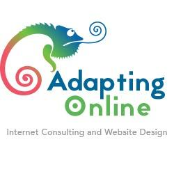 Adapting Online, LLC - Austin, TX - Website Design Services