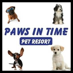 Paws In Time - West Chicago, IL 60185 - (630)208-7772 | ShowMeLocal.com