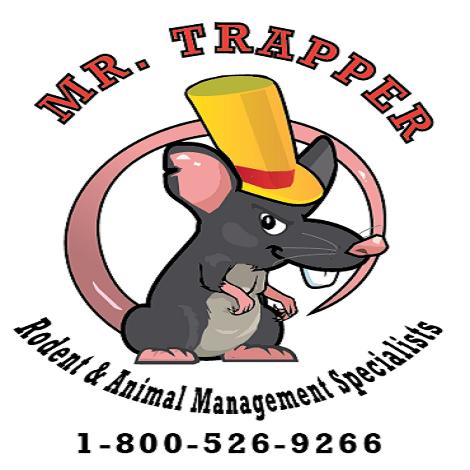 Mr Trapper