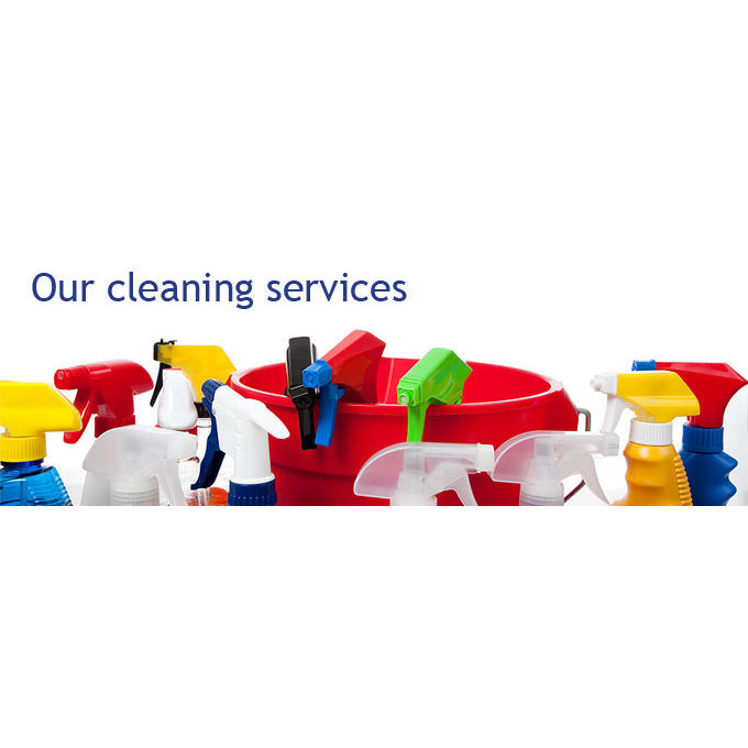 A Bizzy Bee Cleaning and Personal Assistant Services