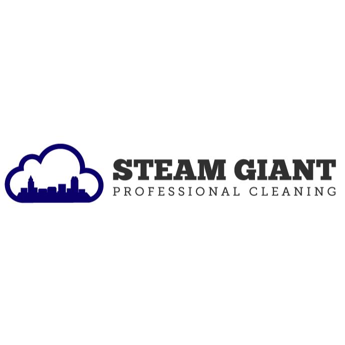 Steam Giant Logo