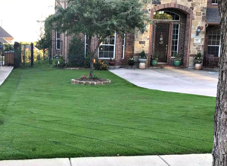 The chowtreez landscaping full lawn services llc keller for Local landscaping companies