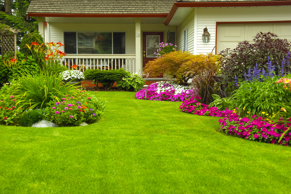 Connecticut Lawn Care Amp Services In Norwalk Ct 06851