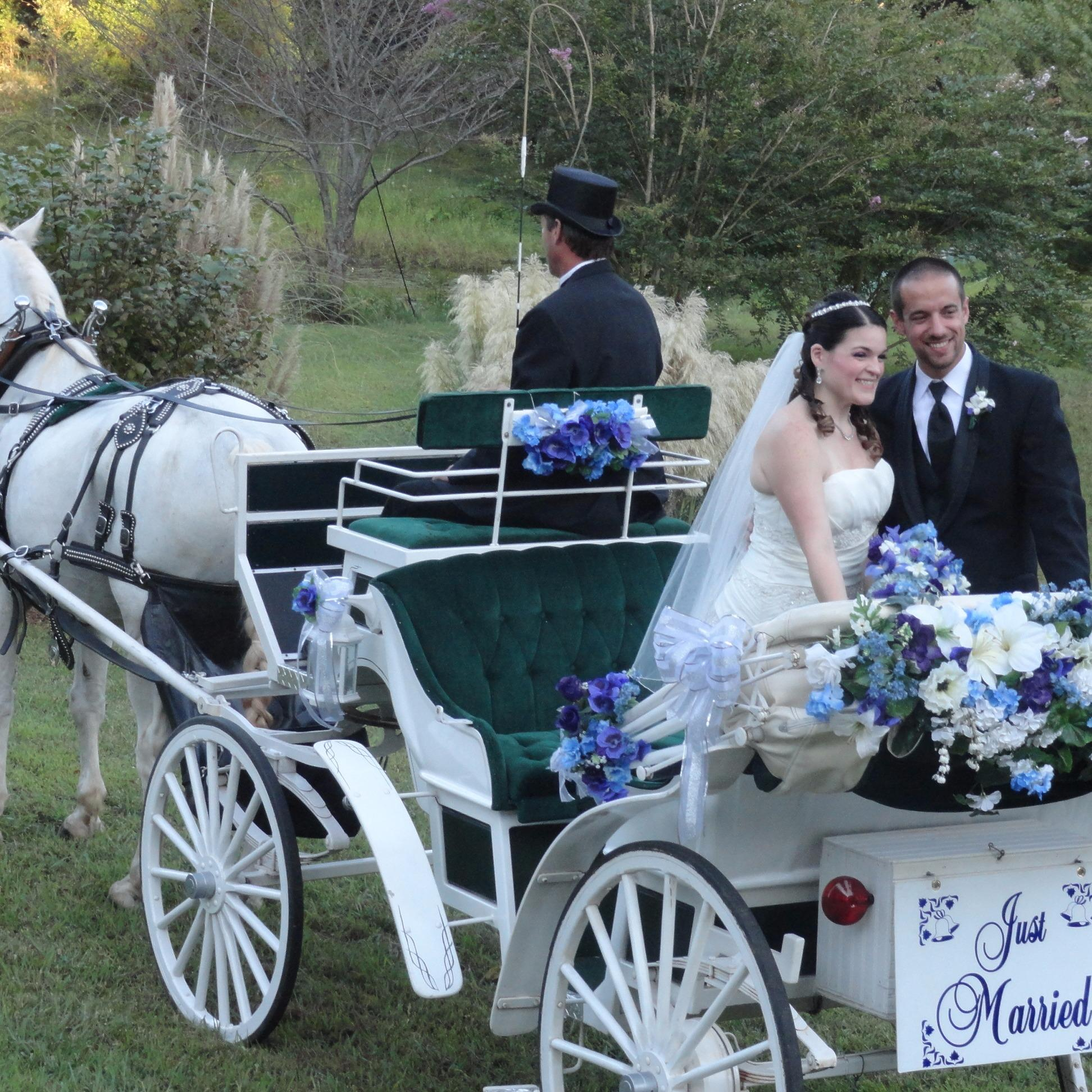 Happy Trails Horse and Carriage