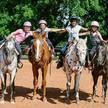 Silver Wind Stables - Edmond, OK - Horse Boarding & Training