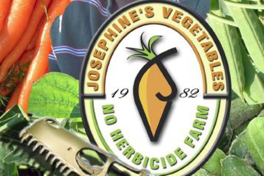 Josephines Vegetables & Dinosaur Valley Mini Golf