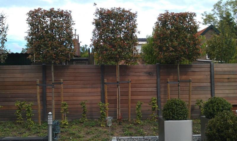 De Fruittuin Boomkwekerij en Groenbedrijf VOF