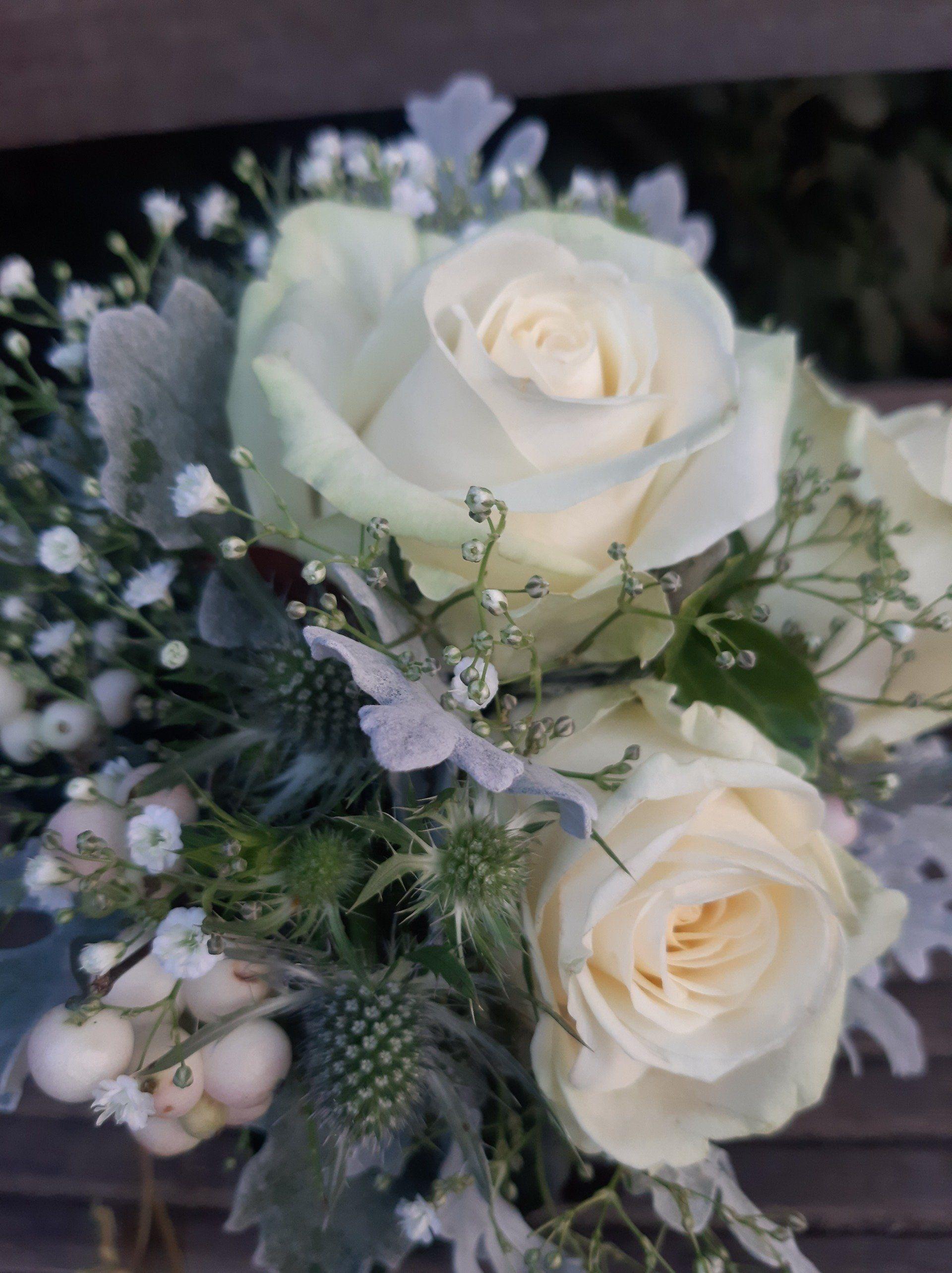 Moor Flowers Inh. Anja Behrens