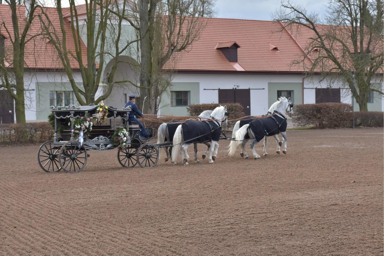 Pohřební služba CHARON – Jitka Filipová s.r.o.