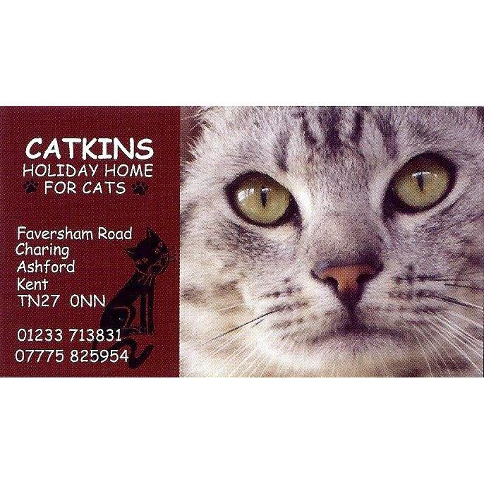 Catkins Holiday Home for Cats - Ashford, Kent TN27 0NN - 01233 713831 | ShowMeLocal.com