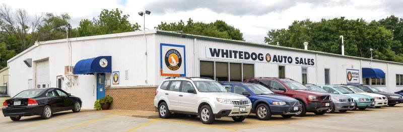 White Dog Import Auto Service
