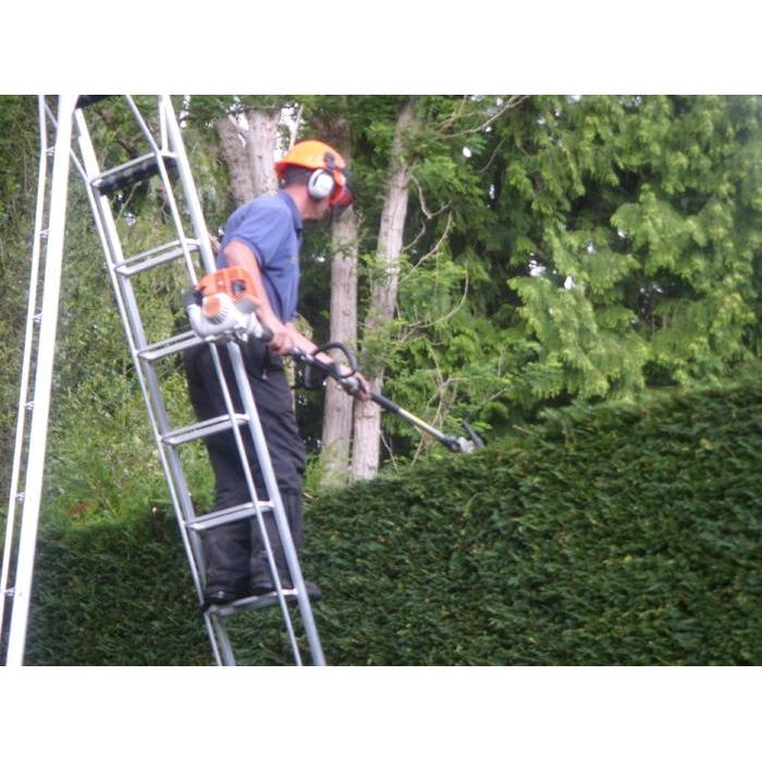 Ian Lawrence Tree and Fencing Services - Kenilworth, Warwickshire CV8 1GN - 01926 856478 | ShowMeLocal.com