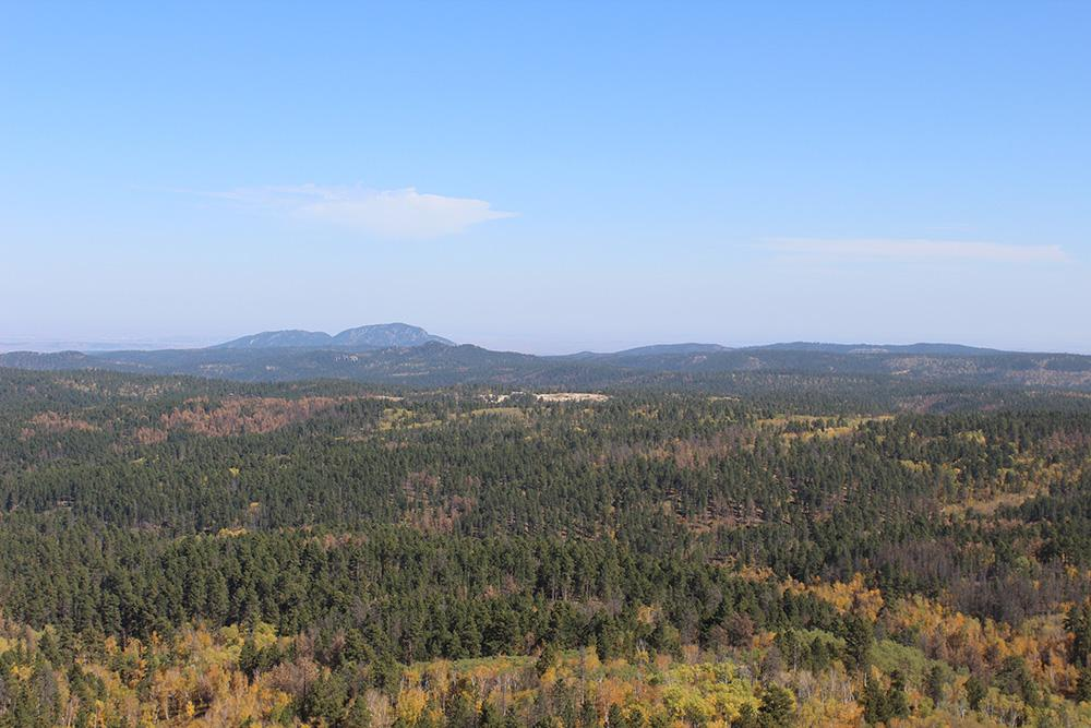 Mystic Pines Lodging of the Black Hills