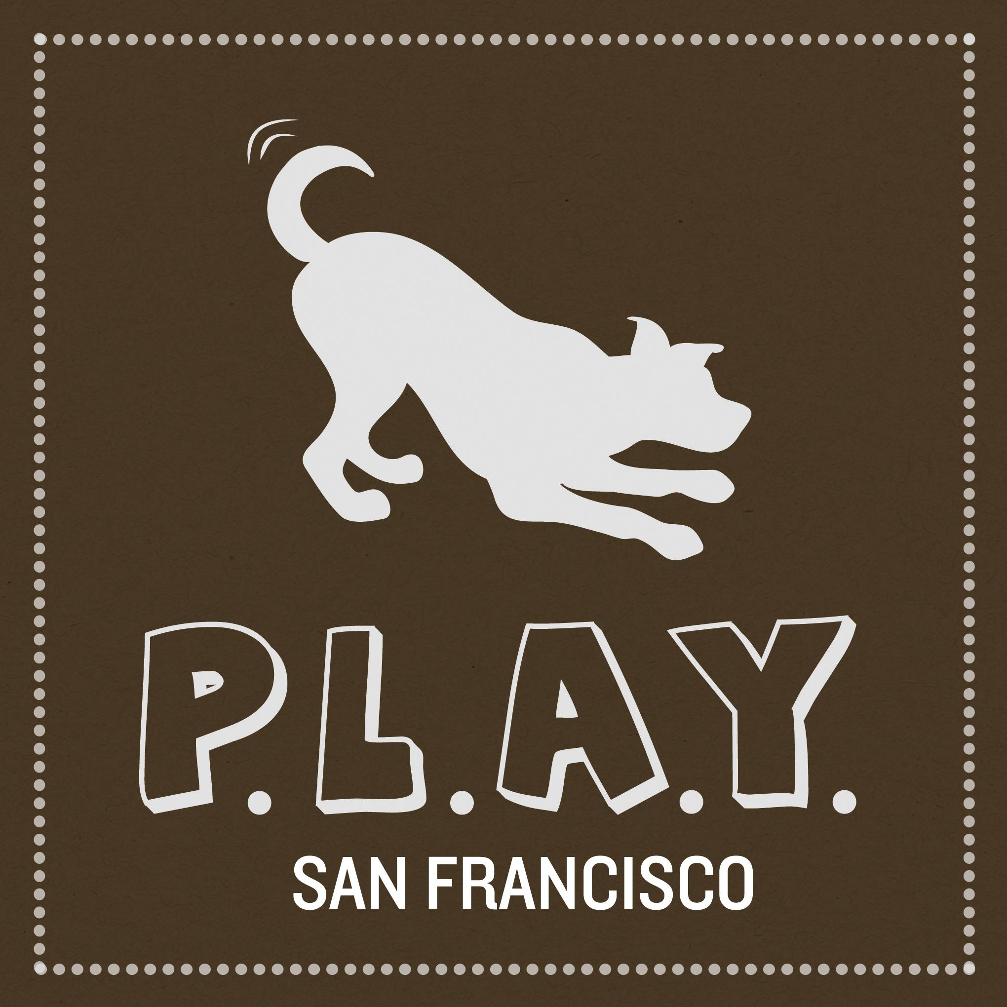 P.L.A.Y. PET LIFESTYLE AND YOU INC