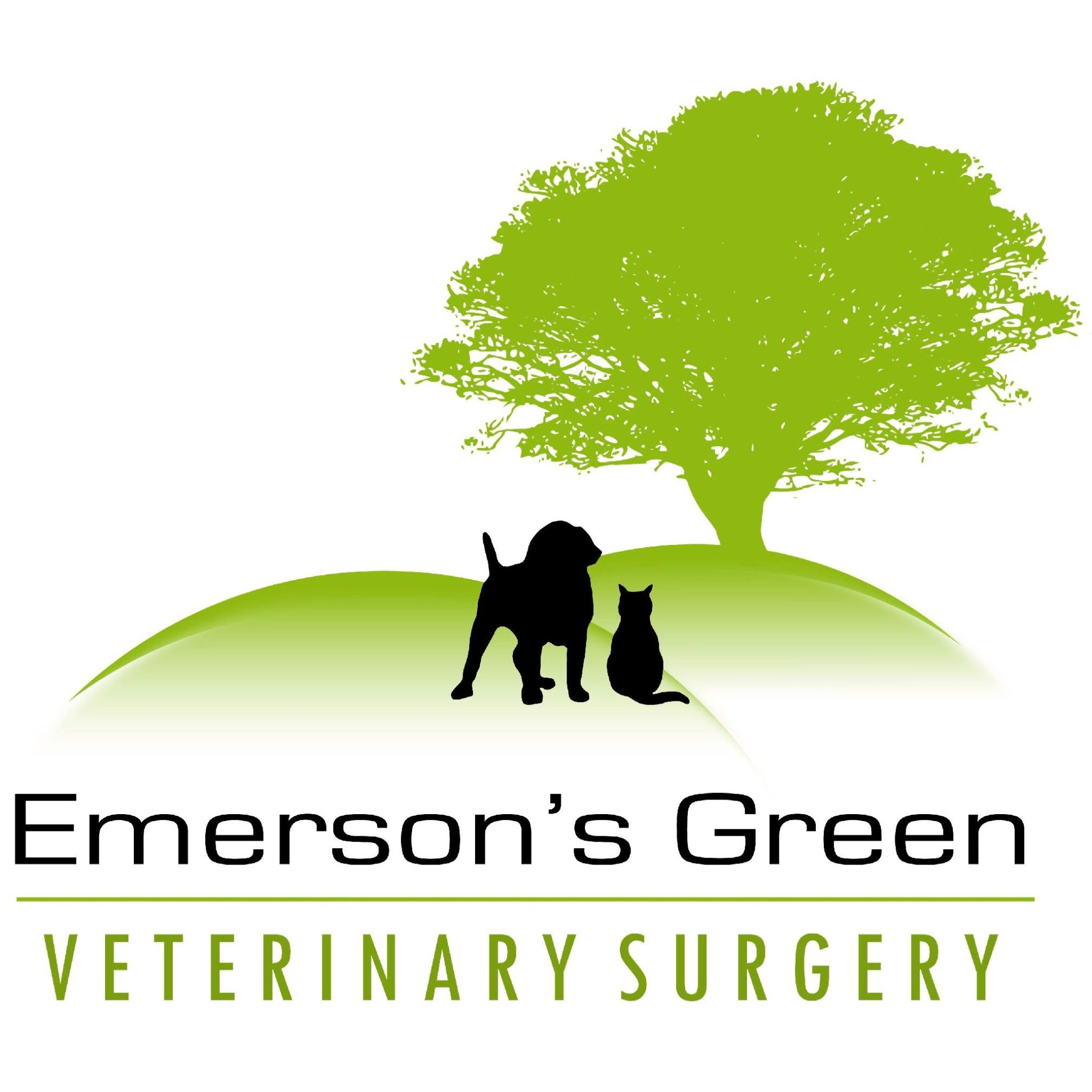 Emerson's Green Veterinary Surgery - Bristol, Gloucestershire BS16 7AS - 01179 571110 | ShowMeLocal.com