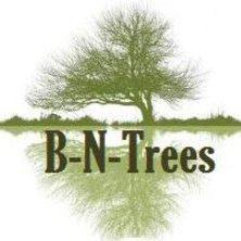 B N Trees