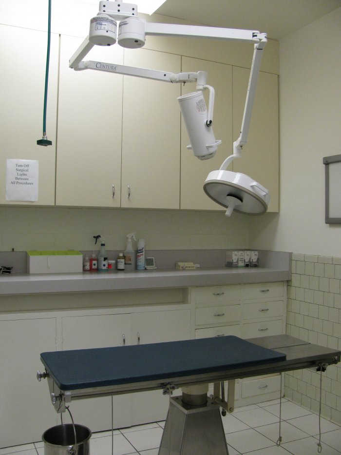Vca Dog And Cat Hospital Santa Monica