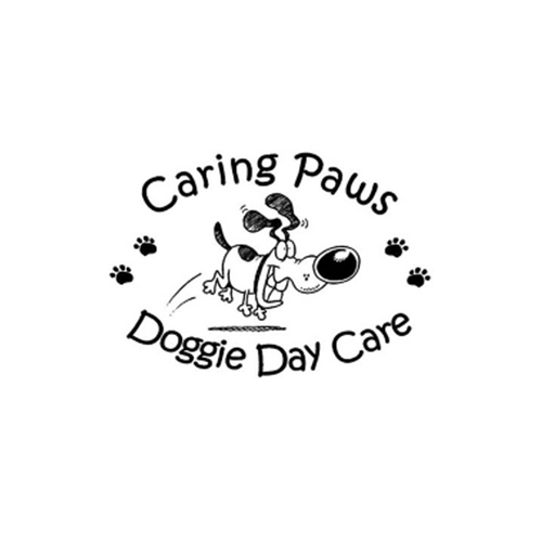 Dog Day Care Albuquerque Nm