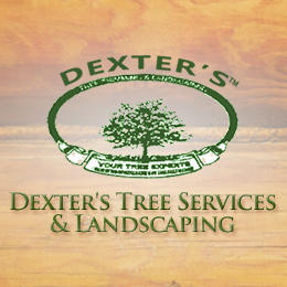 Dexter's Tree Services & Landscaping