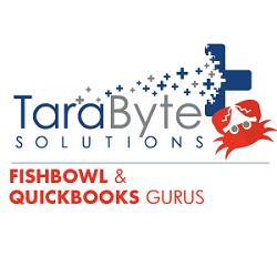 TaraByte Solutions