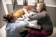 At Parkville Animal Hospital, our technicians are trained to hold our patients for exams so that pet's feel as safe and comfortable as possible.
