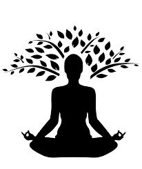 Thai massage carnegie review