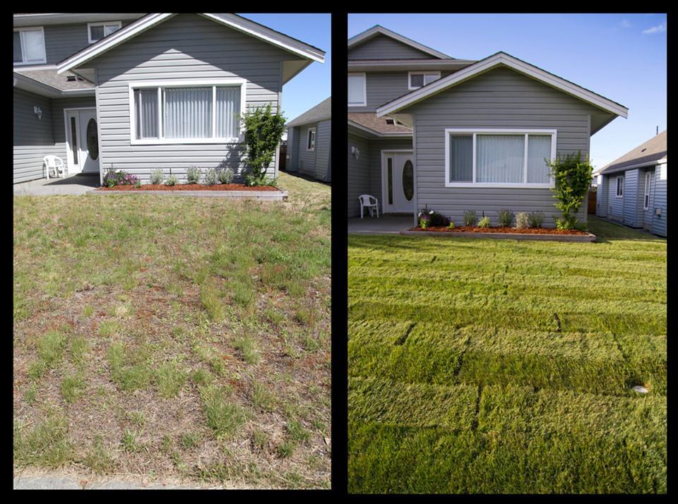 Earthwork Landscape & Skid Steer Services - Homestead, FL 33030 - (305)778-2359 | ShowMeLocal.com