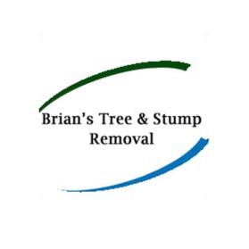 Brian's Tree & Stump Removal