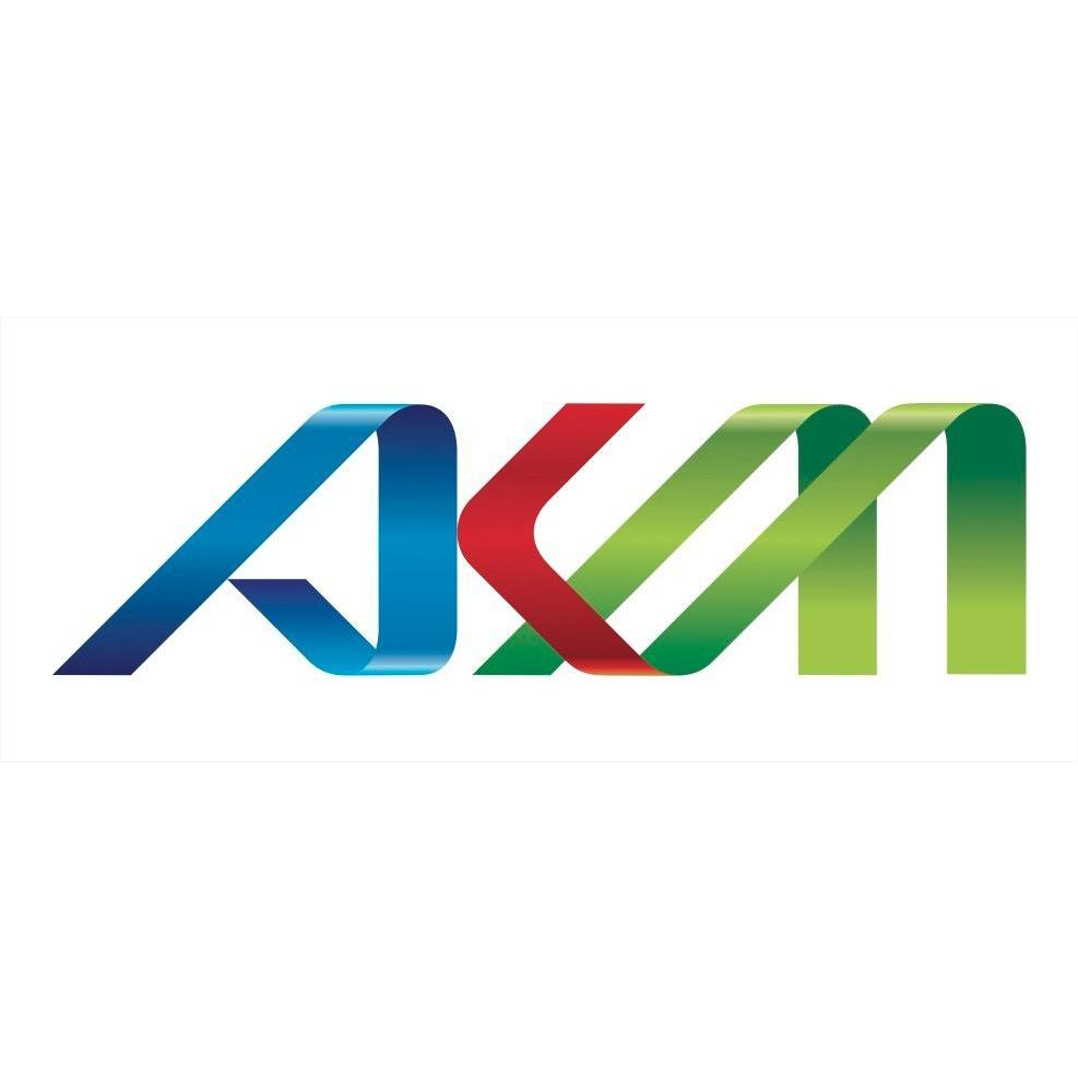 AKM Holdings, Inc.