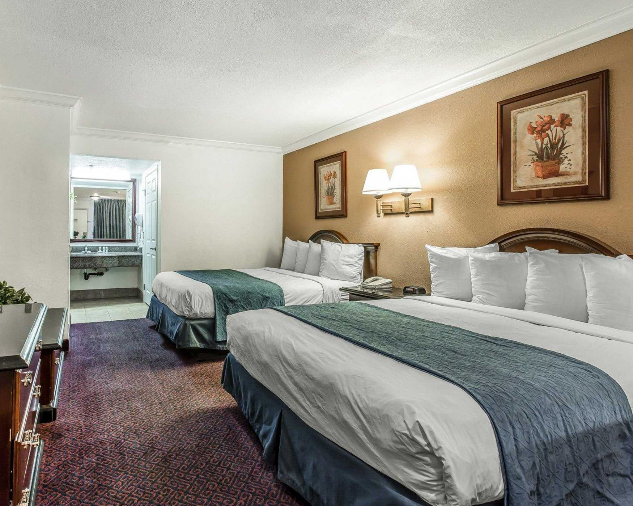 Hotels In Hemet Ca Pet Friendly