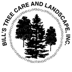 Bills Tree Care And Landscape -TM