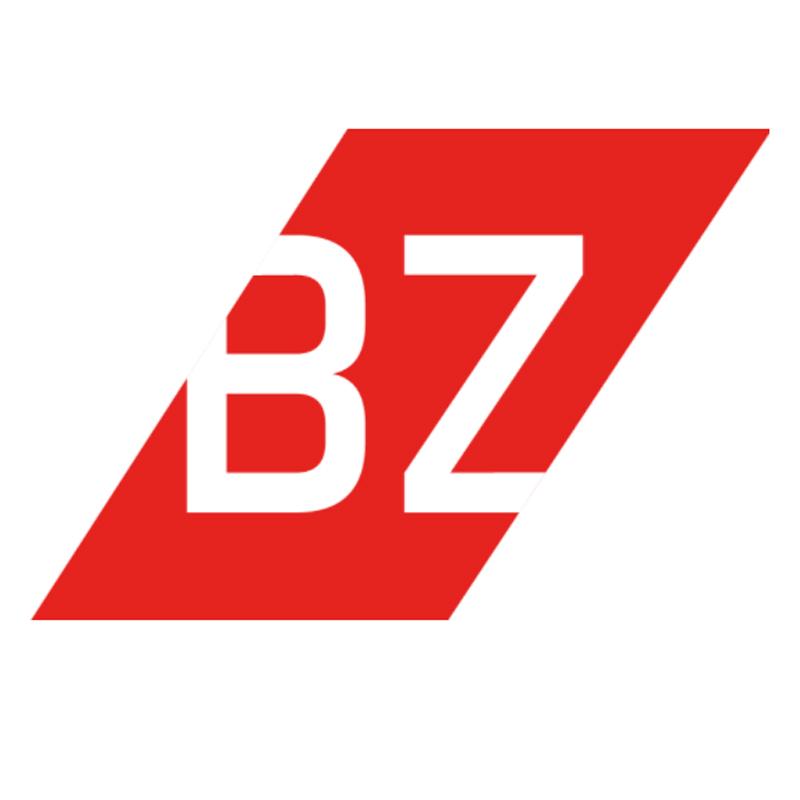 Bild zu BZ-Umzüge in Freiburg im Breisgau