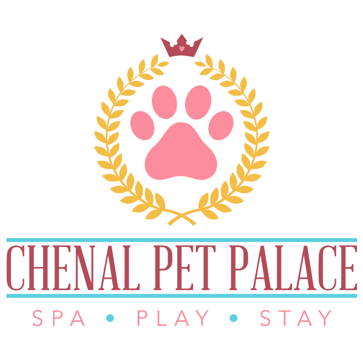 Chenal Pet Palace - Little Rock, AR - Kennels & Pet Boarding