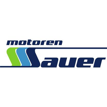 Bild zu Motoren-Sauer GmbH in Hösbach