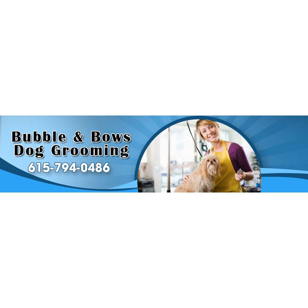 Bubbles n Bows Dog Grooming