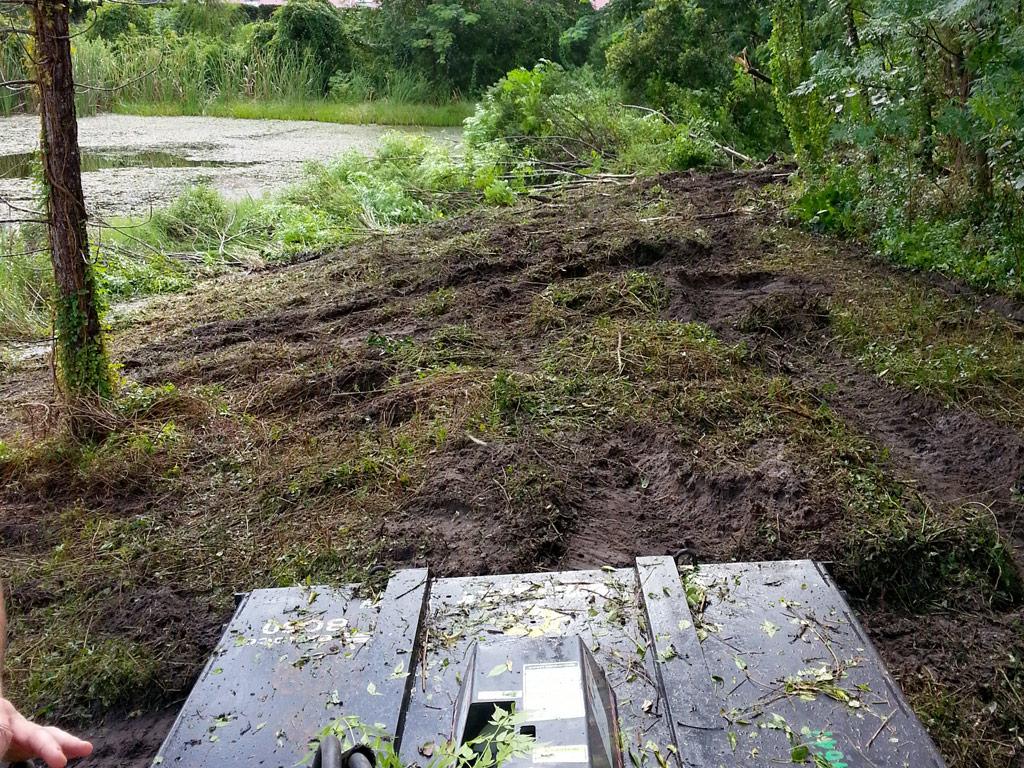 Beaver Tree Service Inc Orlando Florida Fl