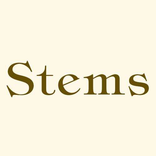 Stems - Northport, AL - Florists