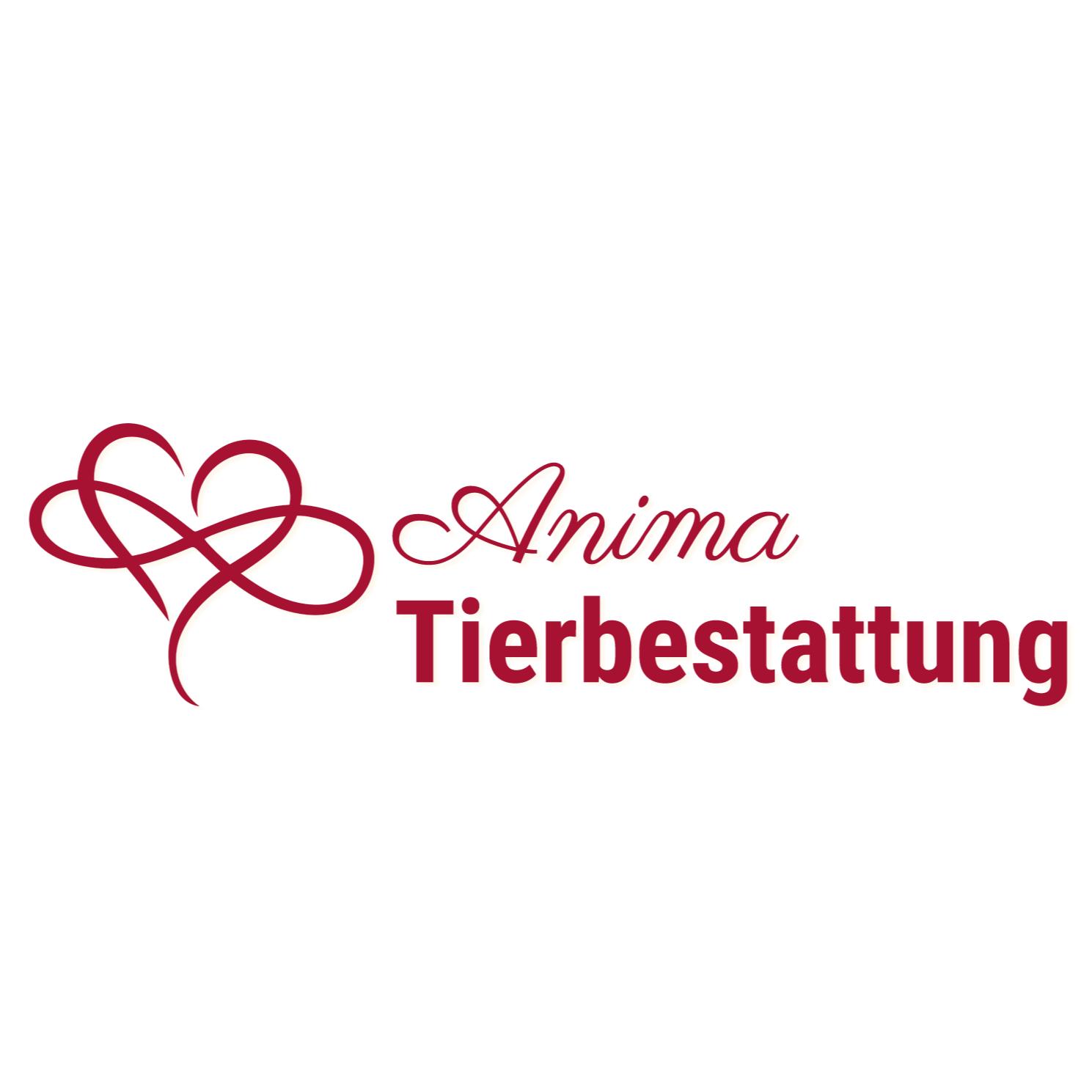 Bild zu Anima Tierbestattung in Leipzig